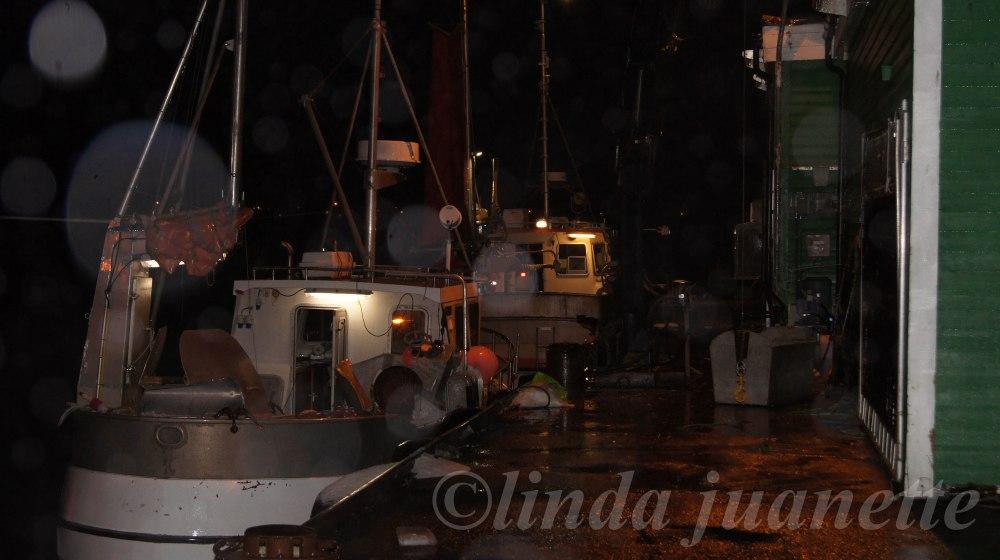 Fiskebåtene er kommet inn fra Stordjupta.