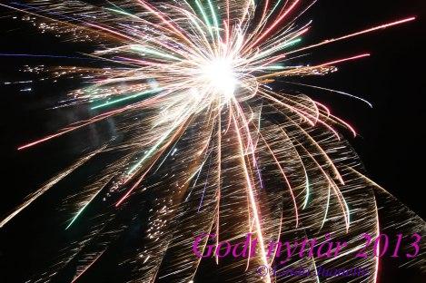 Godt nytt år 2013!