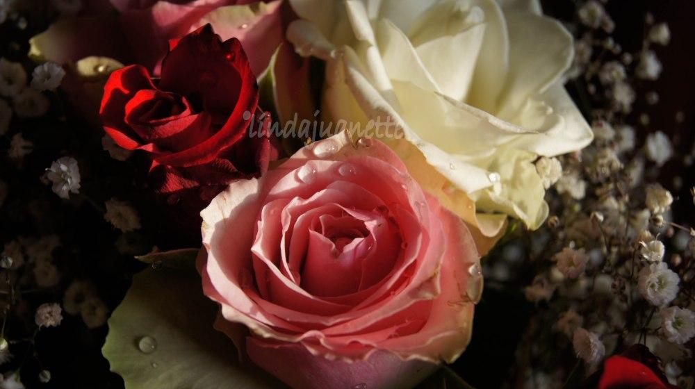 En rosebukett til minne om mor Alfhild.