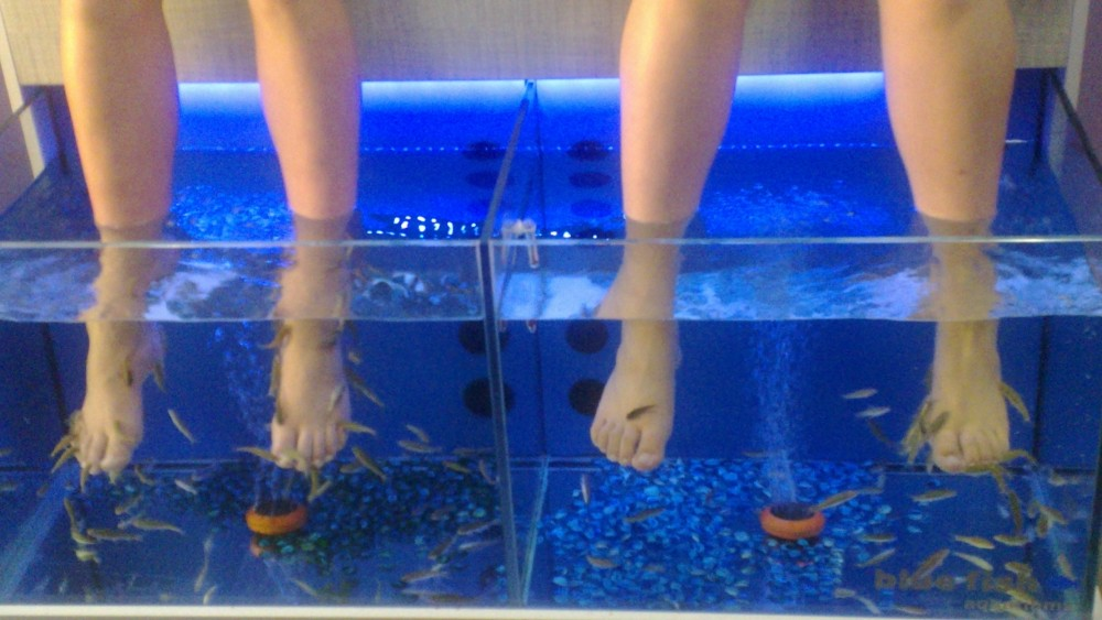 Fiskespa i Rethymnon. Anbefales, både for å få deilige føtter - og for å få trimmet lattermusklene. Det var hysterisk morsomt!