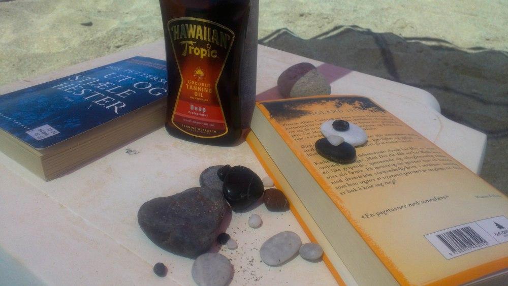 Sololje, stein fra stranda og ei god bok - det er strandlykke :-)
