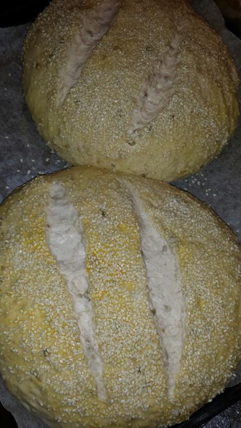 Pensle de utbakte brødene med egg og strø sesamfrø over. Snitt med en skarp kniv, det gir et fint mønster når brødene begynner å heve slik som her.