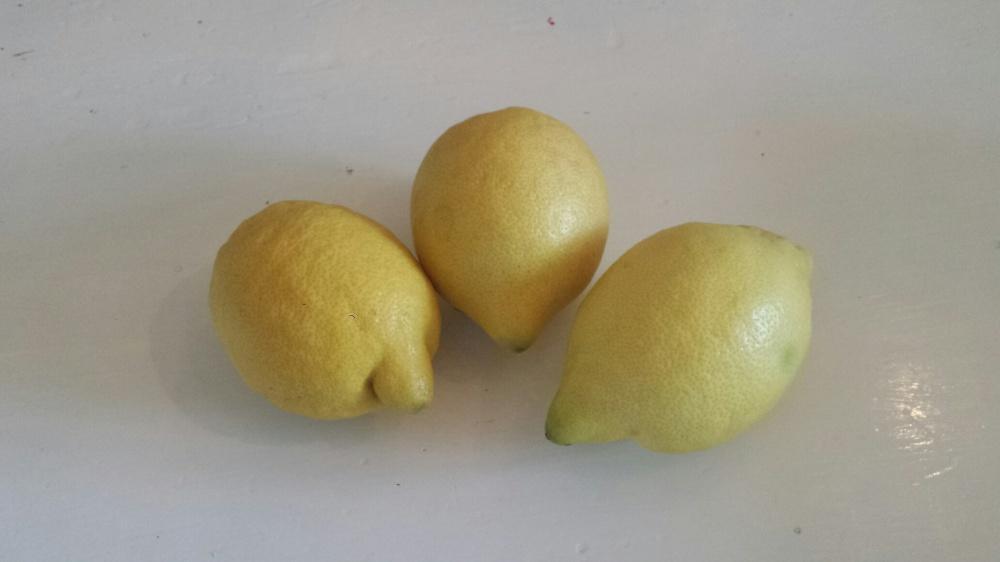 Sitroner klar for å bli limonade.
